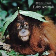Calendar 2018: Baby Animals